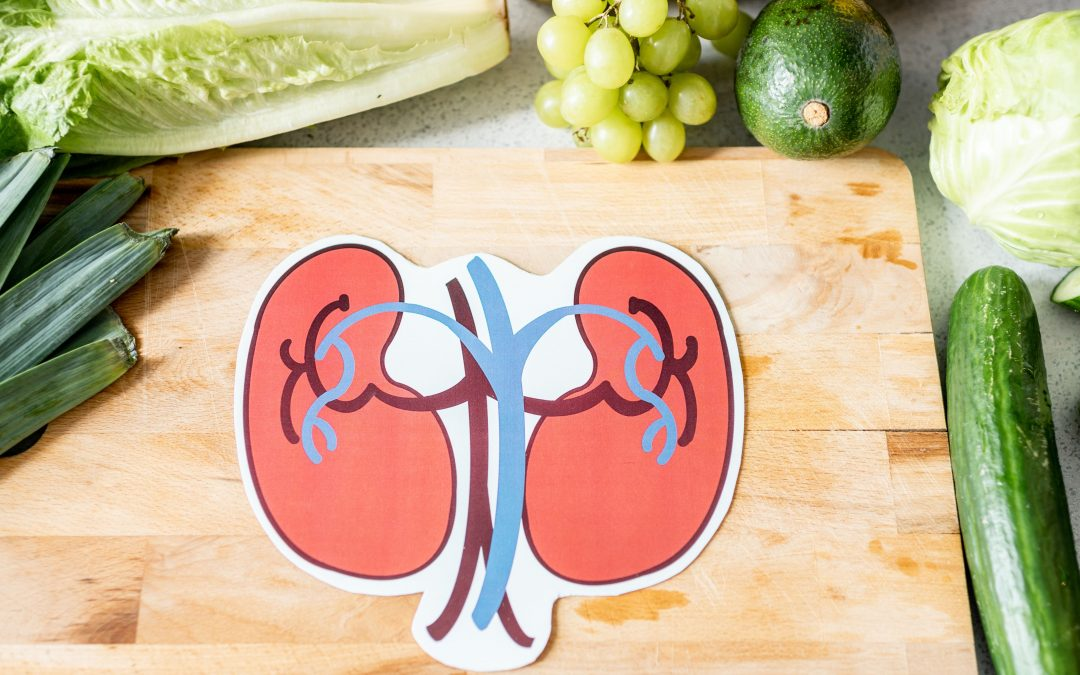 The Basics About Kidney Health